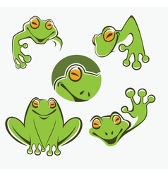 frogs collection vector image vector image