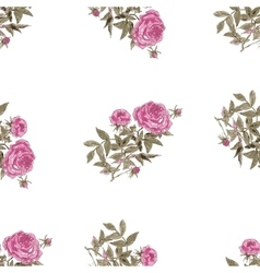 Seamless pattern with pink flowers of peonies vector