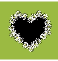 Daisy floral heart for your design vector image vector image