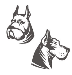 dog head isolated on white background design vector image