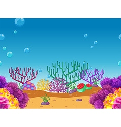 Seamless coral reef under the water vector