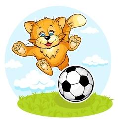 Cat footboler vector image vector image