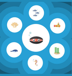 Flat icon marine set of cachalot tuna conch and vector