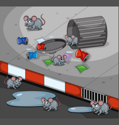 Rats searching trashcan on the sidewalk vector