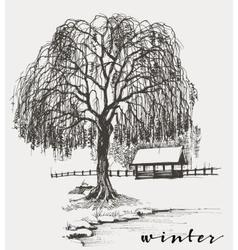 Winter sketch willow tree vector image vector image