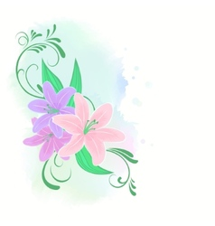 Lilies flowers vector image vector image