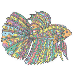 Zentangle doodle betta fish - colorful version of vector