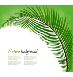 Nature background with a palm leaf vector