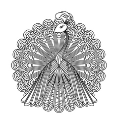 image of a peacock vector image