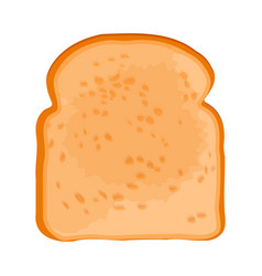 Closeup of slice of bread isolated on vector