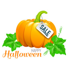 Happy halloween beautiful pumpkin sale vector