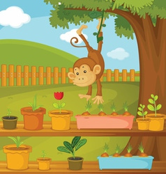 Monkey in park vector