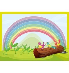 Birds watching the rainbow vector