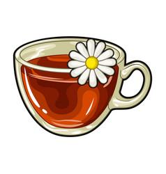 Glass mug with tea usefulvegetarian therapeutic vector
