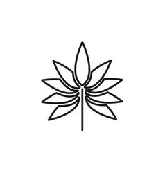 maple icon vector image vector image