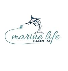 marine life with marlin vector image