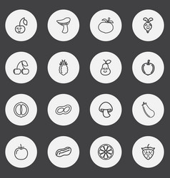 Set of 16 editable cookware outline icons vector