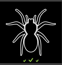 Spider or tarantula it is white icon vector
