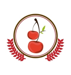 Delicious cherries fruit vector