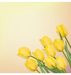 Spring background with beautiful tulips eps 8 vector