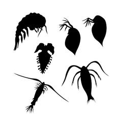 Plankton silhouettes vector