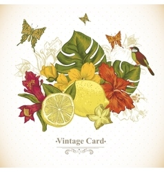 Vintage Greeting Card Tropical Fruit Flowers vector image