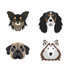 flat dog icon vector image