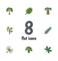 Flat icon natural set of spruce leaves alder vector