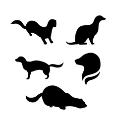 Mink silhouettes vector