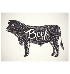 silhouette bull beef vector image