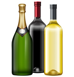 Three bottles of wine and champagne vector image vector image