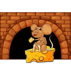 Mouse eating cheese in the house vector image