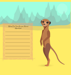 african meerkat vector image