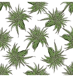 Seamless pattern with green aloe vera vector