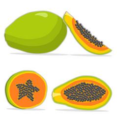 The papaya vector