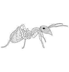 Ant coloring for adults vector