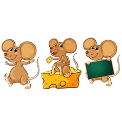 Three playful mice vector