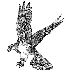 Hand drawn of decorative eagle vector