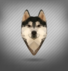 Husky polygon abstract triangle vector