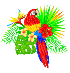 bright tropical composition with parrot palm tree vector image