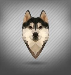 Husky polygon abstract triangle vector image vector image