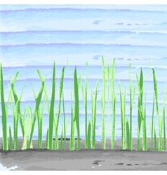 Hand drawn watercolor grass on blue aquarelle vector