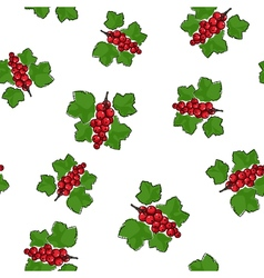 Seamless pattern of redcurrant vector