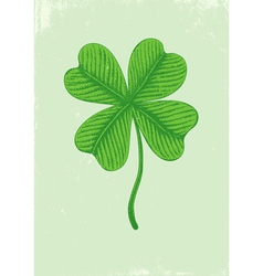 of clover vector image
