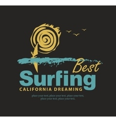 best surfing in California vector image