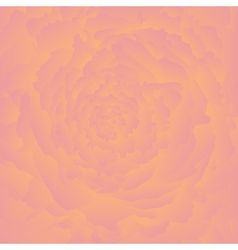 Abstract rose background vector