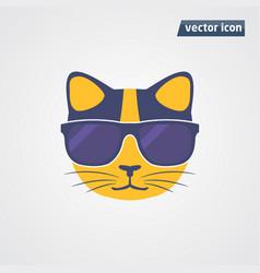 Cat in sunglasses vector