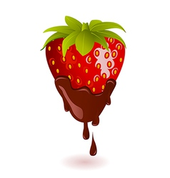 Chocolate Dipped Strawberry vector image vector image