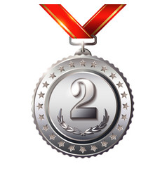 Second place award medals set isolated on white vector