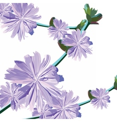 Watercolor delicate purple flowers bouquet vector